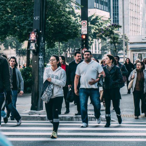 Investigación sobre mercado laboral y personas solicitantes de asilo – CEAR